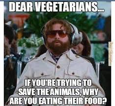 Funny Dissing Memes - funny memes jokes pictures haha lol via ohsohumorous com 04674
