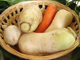 Chinese Root Vegetables - appon u0027s thai food recipes thai vegetables recipe archives