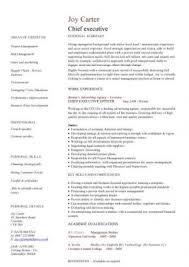 free executive resume senior executive resume template top resume template writing sles