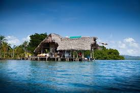 secluded tropical reef cabin cabins for rent in bocas del toro
