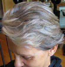 doing low lights on gray hair adding lowlights to gray hair mary s kitchen pinterest gray