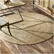 Small Round Braided Rugs 83 Best Rugs Images On Pinterest Area Rugs Apartment Ideas And