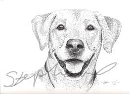 drawing dogs pictures cliparts co