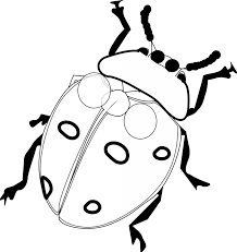 100 coloring pages of ladybugs basketball player coloring