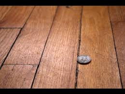 Flooring Options For Bedrooms Cheap Flooring Cheap Flooring Ideas For Bedroom Youtube
