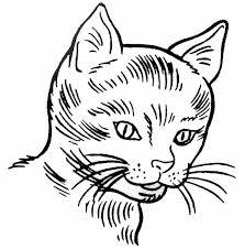 Coloriage tete de chat