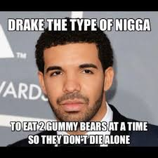 Drake The Type Of Meme - drake the type of nigga funny wtf meme image