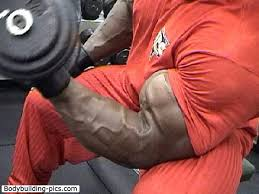 Ronnie Coleman Bench Can Anybody Be Bigger Ripper And More Developed Than Ronnie