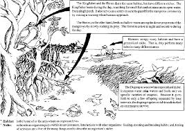 basic concepts in environment agriculture and natural resources
