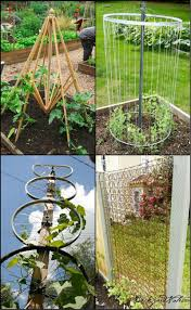 making your own trellis has never been this easy or cheap these