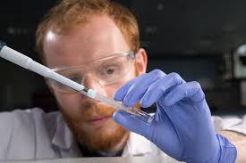 reaction rates key answers study guide biology enzyme reaction rates university of birmingham