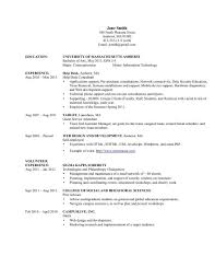 Cio Sample Resume Best Ideas Of Sample Information Technology Resume About