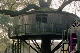 37 pictures of tree houses