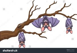 happy cartoon bat hanging on tree stock vector 317760053