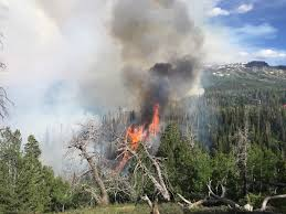 Wild Fire Brian Head Utah by News Live Brian Head Fire Fire At 500 Acres 1 Home Confirmed