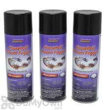 lights out bed bug killer amazon com lights out bed bug killer spray all natural organic
