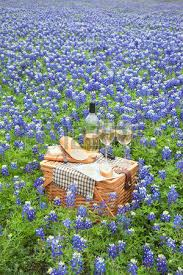 Wine And Country Baskets A Brown Wicker Picnic Basket With Wine Cheese Bread And Utensils