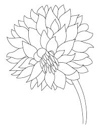garden flower dahlia coloring download free garden flower
