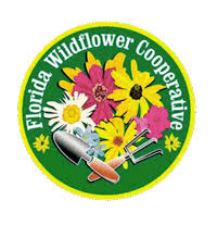 Florida State Wild Flower - welcome to the florida wildflowers growers cooperative