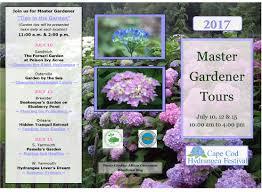hydrangea festival master gardener tours cape cod cooperative