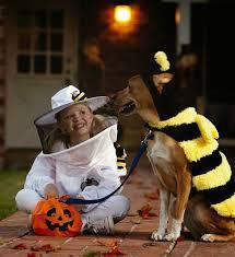 Beekeeper Halloween Costume Everyday Finesse Happy Halloween
