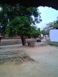 file save earth save trees save villages jpg wikimedia commons