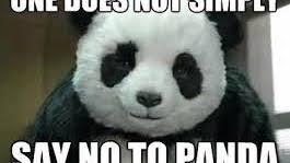 Memes De Pandas - panda memes tumblr
