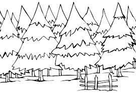 coloring pages of trees lovely trees coloring pages for your