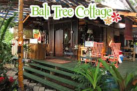 bali tree cottage filling my passport with family travel and bliss bali tree cottage