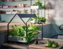 indoor planting indoor growing kits cultivators ikea