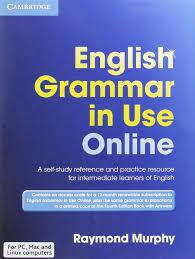 100 english grammar worksheets online english grammar in