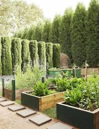 10 lovely wall container garden ideas full sun perennials