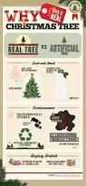 Guse Christmas Trees by Buy Real Christmas Tree Beatiful Tree