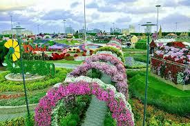 closing date of dubai miracle garden season 2016 rinnoo net website