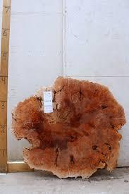 Tall Boy Table 98 Best Burls U0026 Cookie Cuts Disks Images On Pinterest Coffee