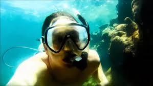 Maryland snorkeling images Lerkenlund bay snorkeling st thomas us virgin islands coral jpg
