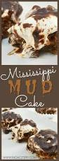 best ever mississippi mud cake recipe my kids and i made this