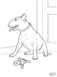 bull terrier coloring page free printable coloring pages