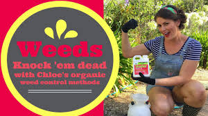 new organic herbicide slasher weed killer organic weed
