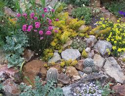 Rock Gardens Ideas Stylish And Peaceful Succulent Rock Garden Ideas For Small Gardens
