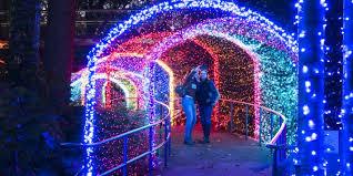 Botanical Gardens Lights Photos Atlanta Botanical Garden Transforms For The Holidays