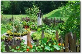 download how to plan a garden solidaria garden