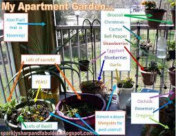 Countertop Herb Garden by Garden Design Garden Design With Apartment Vegetable Garden On