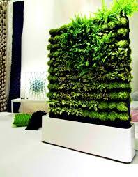 kitchen herb garden diy kit modern home designs