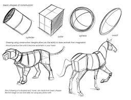 Dog Anatomy Book 278 Best Creature Anatomy Images On Pinterest Drawing Tutorials