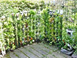 design garden garden and patio vertical urban vegetable gardening