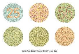 Green Red Color Blind Linked Genes Bioninja