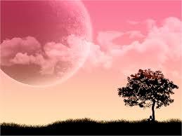Vs Pink Wallpaper by Black And Pink Desktop Wallpaper Wallpapersafari