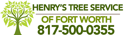 henry s tree service of fort worth tree removal tree trimming