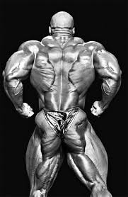ronnie coleman age height weight bio images 8x mr olympia
